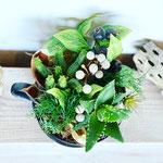 2020年9月 オンラインレッスン & 長野 飯田 1dayレッスン『多肉植物のテラリウム』作り