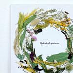 2020年4月 東京 表参道 & 長野 飯田 1dayレッスン『リースのかたちの植物標本』作り