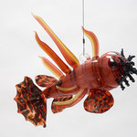Lion Fire Fish