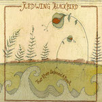 Redwing Blackbird - That River Skinned A Bear cd
