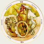 VII Le Chariot - Le tarot du Cycle de la vie