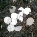 Silver Coins  Republic of Latvia 30-ies.