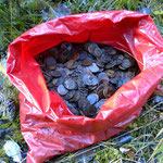 Found the treasure! More than 5 kilograms of Soviet coins until 1961. I still do not understand why they were buried.