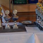 Pokale und Auszeichnungen der verschiedenen Wettkämpfe