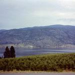Lac Okanagan