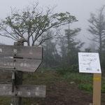 霧にかすむ権現山山頂
