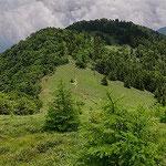 ⑦熊沢山から石丸峠、笹原の登山道が続いてる