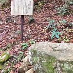 大石内蔵助腰掛石 大石内蔵助は、このお城に一年間在番した
