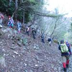 林道から山中へ