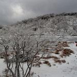 冬の景色を堪能して