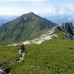 分岐から三ノ沢岳へ歩を進める