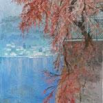 Lago da piazza Italia- Mandello. Olio su tela 30X40