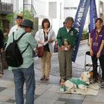 盲導犬育成募金@表参道ケヤキ通り