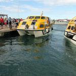 Mit dem Tender sind wir auf Riff gelaufen - Giglio für alle wenn der thailändische Fahrer auf italienisch flucht