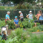 The real heart of community gardening - people enjoying eachother