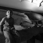 Ivan y ...la ballena