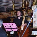 Matteo Cicchitti, Violone