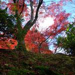 kyoto, Japan, 2010