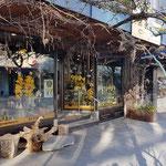 zu jeder Jahreszeit schön dekorierter Blumeladen in Molde
