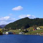 Torvik