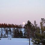 Mein bester Freund im Winter - der Mond