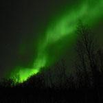 Gegen Ende der Saison hatten wir sehr viele wunderschöne Nordlichter