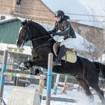 Верховая езда в Самаре