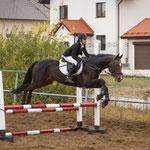 Соревнования по конному спорту в Самаре