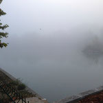 Bassin de Réaltor sous le brouillard