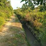 Canal de Miramas