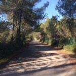 Route de Bibemus
