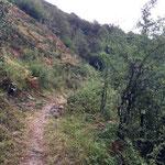Parc national des Pyrénées près d'Urdos