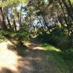 Direction vers les quatre étangs