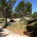Site archéologique de Saint Blaise