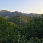 Beaucoup de forêts à traverser après Saint-Gervais-sur-Mare