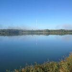 Bassin de Réaltor