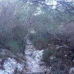 Tout de suite le chemin monte vers le col de Morgiou