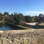 Le canal de Provence