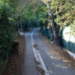 Petite route me menant à Auriol