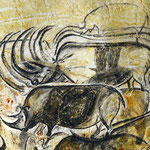 Galerie de rhinocéros