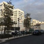 Suite aux Docks de nouveaux immeubles