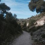 Descente vers le vallon d'En Vau