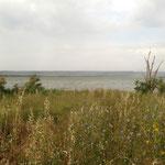 L'étang de Bolmon
