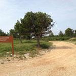 """Forêt communale """"Le Canton"""""""