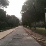 Traversée du parc Montredon-Pastré