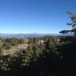 Dans le fond les Alpes
