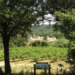 Chartreuse de Valbonne vue d'en haut