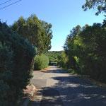 Chemin du Pinet