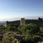 Ancien château à Montpeyroux