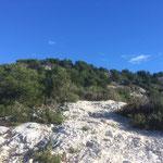 Une dernière grimpette pour atteindre le mont de Luminy